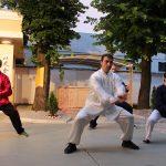 Wing Chun Seminar 2017 - Serbia